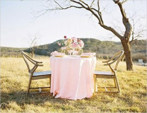 dinner-for-two-wedding-ideas-678-int